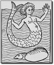 MITO DE LA SIRENA Sirena