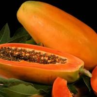 papaya[1]